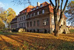 Pałac w Okowiźnie.Fot. Mieczysław Kalski